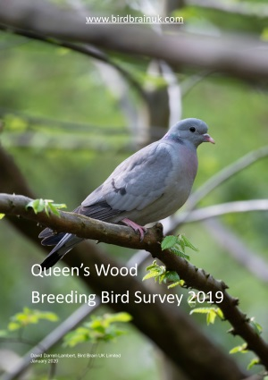 2019 Breeding Bird Survey