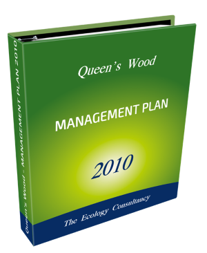 Management Plan 2010