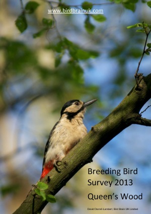 Queen's Wood Breeding Bird Survey 2013