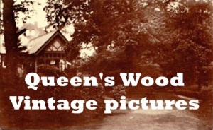 Queen's Wood Vintage pictures