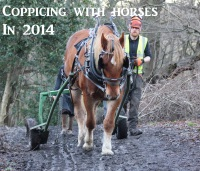 Coppicing with horses